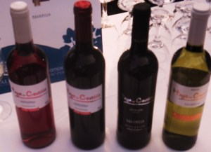 Wines from Polo Monleon